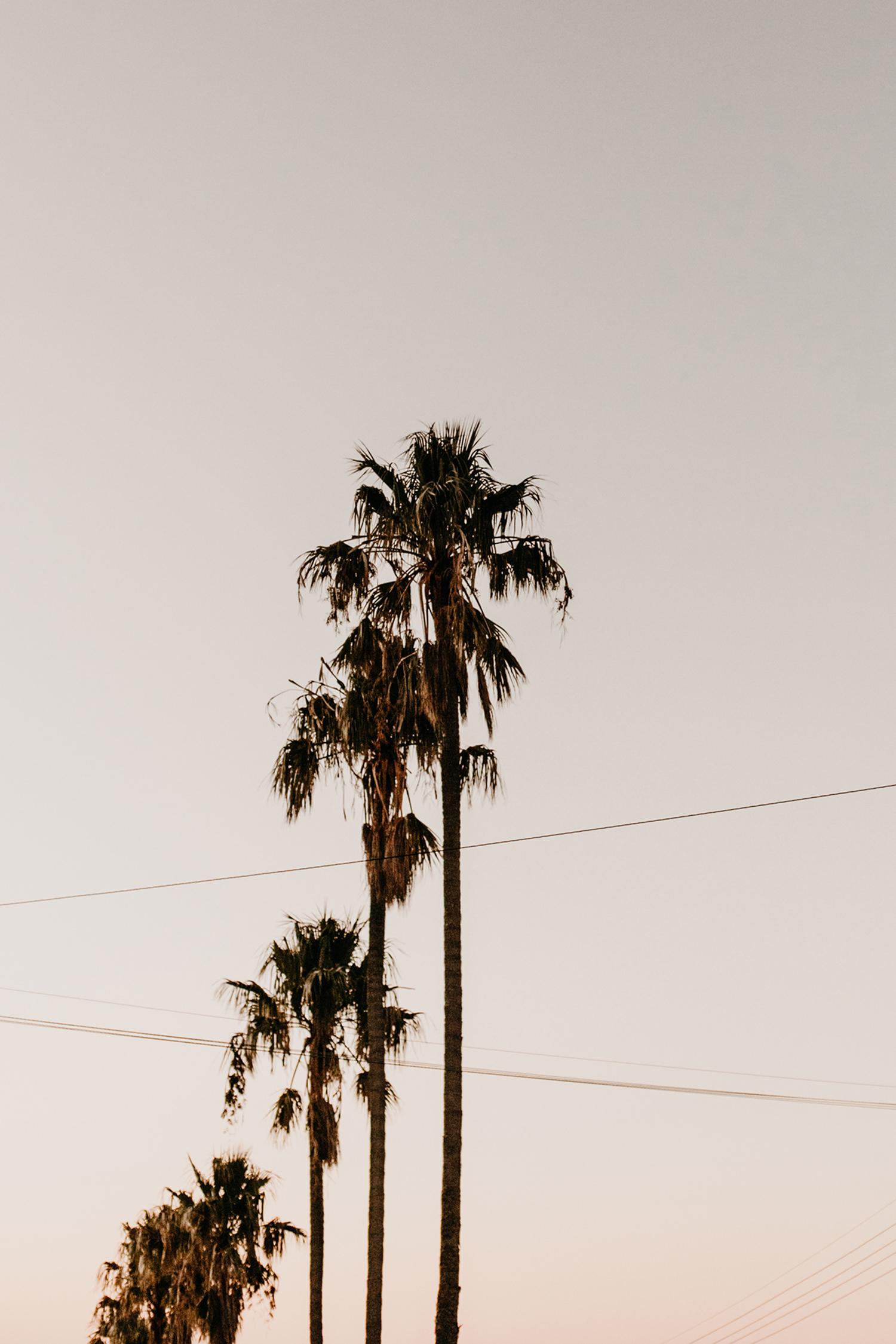 Fotoshooting-Fotograf-People-Lifestyle-Suedafrika-Anna-Fichtner-c-7